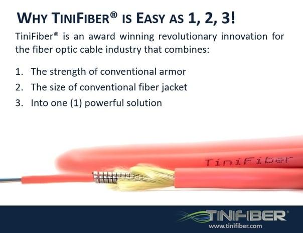 TiniFiber_slide_1